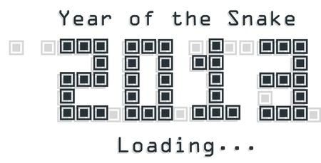 2013 Snake year design  on illustration Vector
