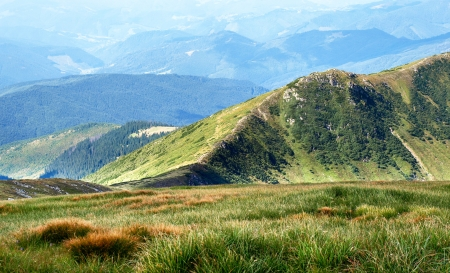 Hiking trail in Carpathian mountains  Ukraine  photo
