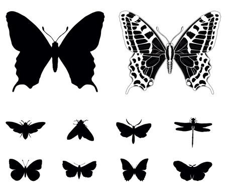 Butterfly colección de siluetas aisladas.