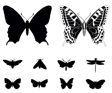 Butterfly silhouettes collection isolated. Stock Vector - 18875120