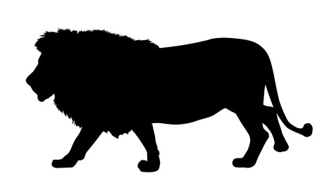 Lion silhouette. Vector illustration. EPS 8 Vector