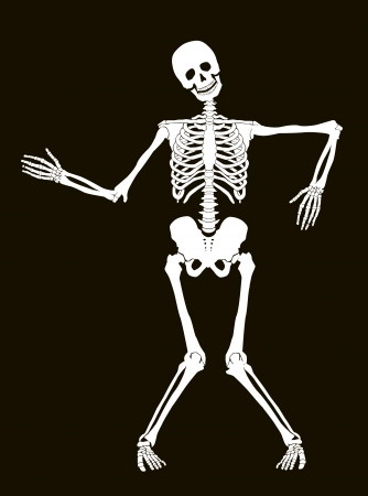 Funny vector skeleton isolated over black. Halloween design Stock Vector - 24201731