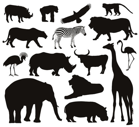 African animals silhouettes set  Vector illustration   Иллюстрация