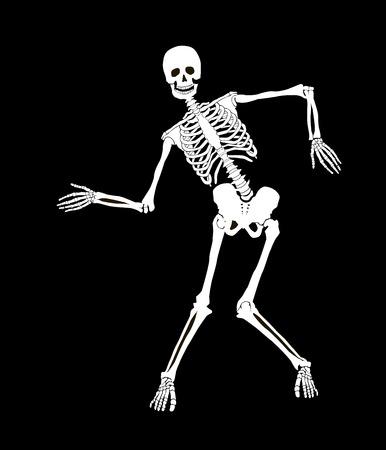 Divertente vettore scheletro isolato su nero. Disegno di Halloween