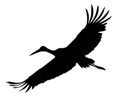 Crane flying.  Vector silhouette Illustration