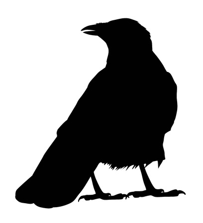 Raven vector silhouet Stock Illustratie