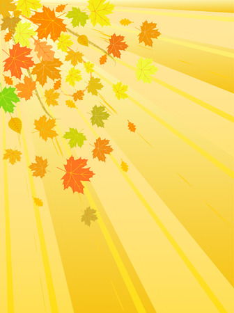 vector autumn leaves background Vector