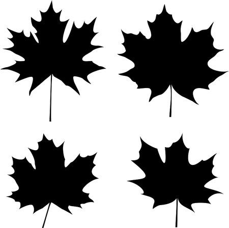 maple leaves silhouette Vector