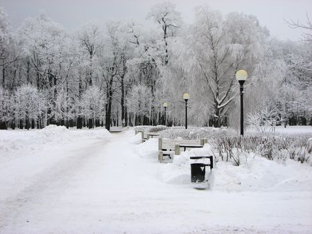 Snow covered benches and trees in park Stock Photo - 6249316