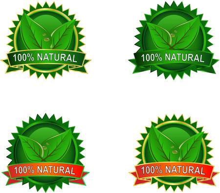 Ensemble des étiquettes de produits naturels Eco avec des feuilles de Vecteurs