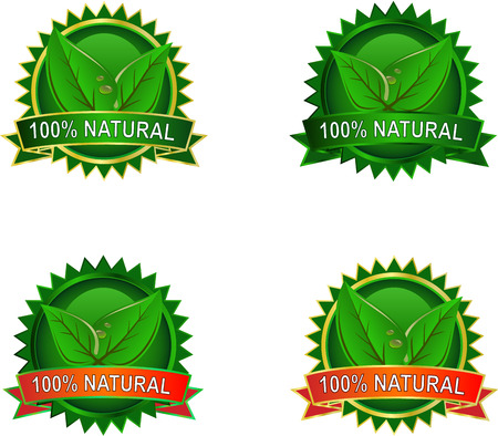 Set of Natural Eco product labels with leaves