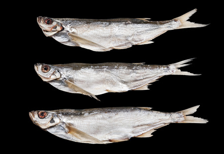 stockfish: Dried sabrefish isolated on a black background