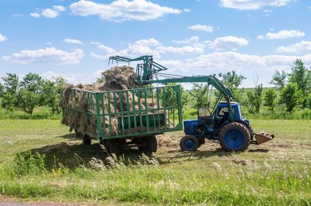 cargador frontal: El cargador frontal carga heno en el remolque  Foto tomada en Rusia, en la región de Orenburg Foto de archivo