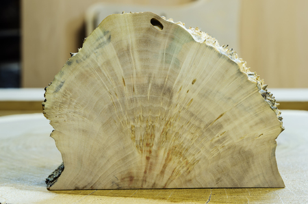 Cross-section of the build-up on the trunk of the birch  The picture was taken in the carpentry workshop