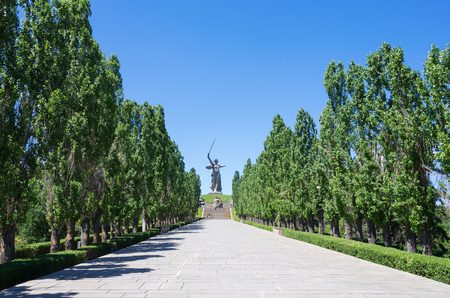 Volgograd, Russia - June 7, 2018: Alley of Pyromidal poplars and the monument