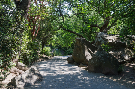 Russia, the Republic of Crimea, the city of Alupka. 06092018: Walkway in the Vorontsov park 版權商用圖片