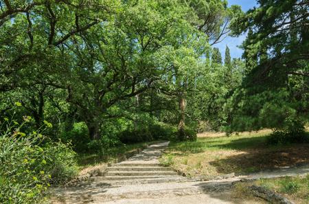 Russia, the Republic of Crimea, the city of Alupka. 06092018: Vorontsov Park, walking track 版權商用圖片