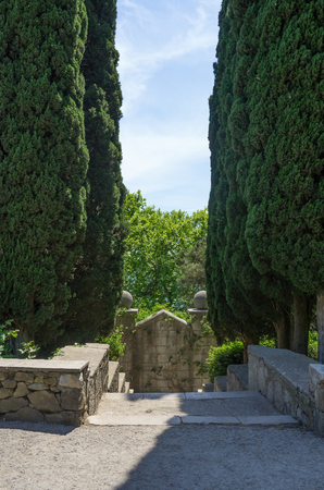Russia, the Republic of Crimea, the city of Alupka. 06092018: Vorontsov Park. Stone staircase between cypresses