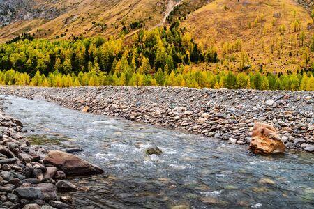 Autumn in the Aktru River Valley. Severo-Chuysky ridge, Altai Republic, Russia
