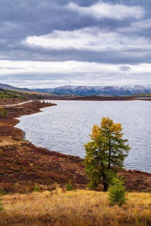 Autumn mountain landscape, the shore of Lake Uzunkel. Ulagansky District, Altai Republic, Russia 版權商用圖片