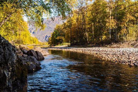 Autumn morning mountain river landscape. Russia, Altai Republic, Ulagansky District, Chulyshman River