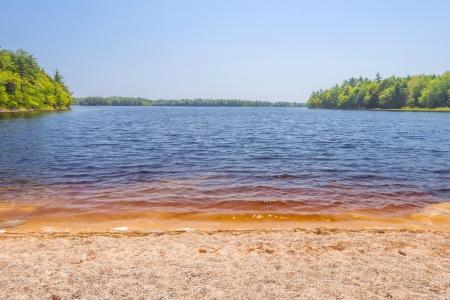 Sandy beach on Lake  Kejimkujik National Park , Nova Scotia, Canada  photo