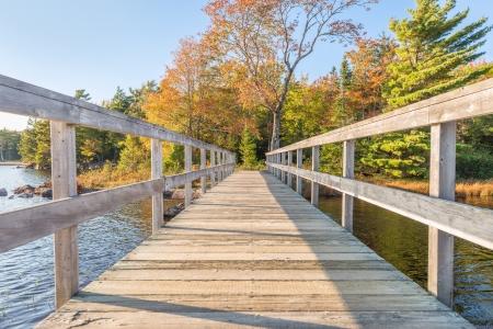 provincial forest parks: Wooden bridge in autumnal park   Dollar Lake National Park, Nova Scotia, Canada
