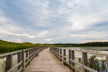 gables: A wooden bridge over a marsh in the Cavendish Dunelands  Green Gables Shore, Prince Edward Island, Canada