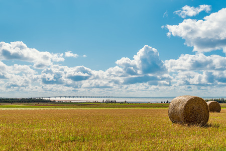 confederation: Hay bales on a farm along the ocean with the Confederation Bridge in the background (Prince Edward Island, Canada)