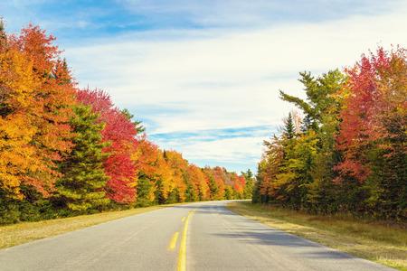Road to Keji in fall (Kejimkujik National Park, Nova Scotia, Canada) Stock Photo