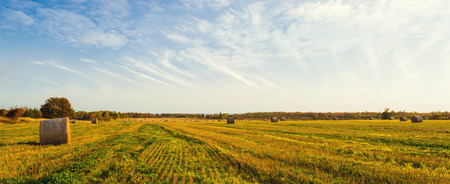 to field: Panorama of scenic view of hay stacks at fall North Cape Coastal Drive, Prince Edward Island, Canada Stock Photo