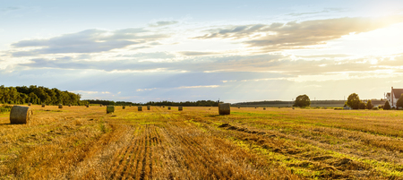 Scenic view of hay stacks on sunny day (Prince Edward Island, Canada) Stock Photo