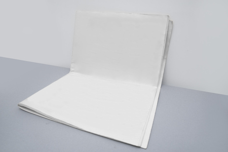 Blank newspaper for your artwork.