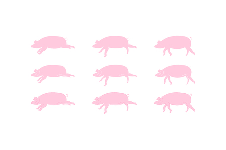 Silhouette Pig Set icons for 2019 year in pink colour isolated on white background. Flat vector background EPS 10.
