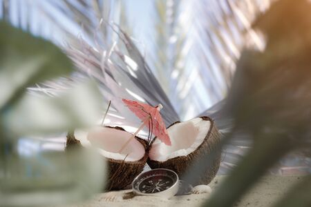 Time to travel. Two halves of a coconut with an umbrella and a compass on the beach against the backdrop of a palm leaf. Concept on the topic of tourism
