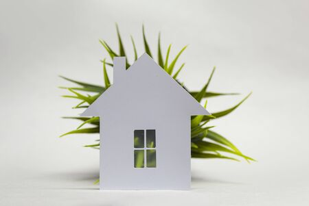 Ecological home made of paper and greens on a white background 스톡 콘텐츠