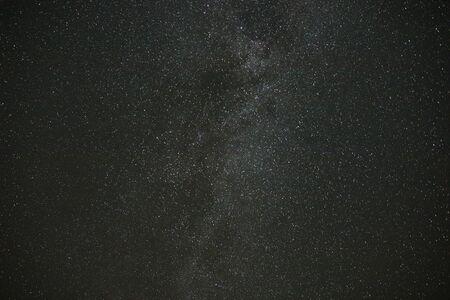 Night sky stars, milky way. Tree silhouette Reklamní fotografie
