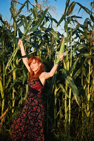 Red-haired beauty in a corn field holding a corn cob 版權商用圖片