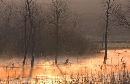 sunrise on the lake in Ukraine Stock Photo - 6036442