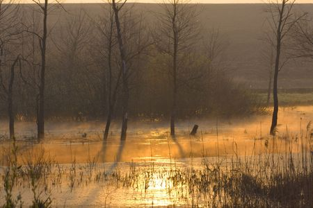 sunrise on the lake in Ukraine Stock Photo - 6036901