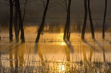 sunrise on the lake in Ukraine Stock Photo - 6036748