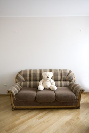 moden luxury wooden interior - hall with the sofa and toy-bear