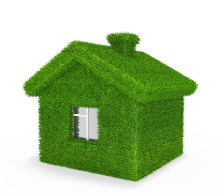 organics: House, grass, ecology,  Stock Photo