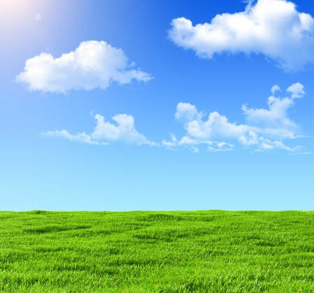 green field on a background of the blue sky photo