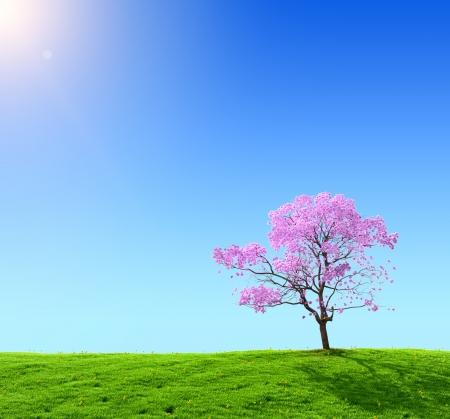 aire puro: campo verde y árbol rosa sobre un fondo de cielo azul