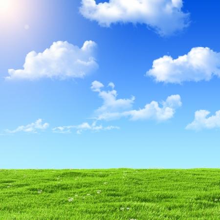 field and sky: el campo verde sobre un fondo de cielo azul Foto de archivo