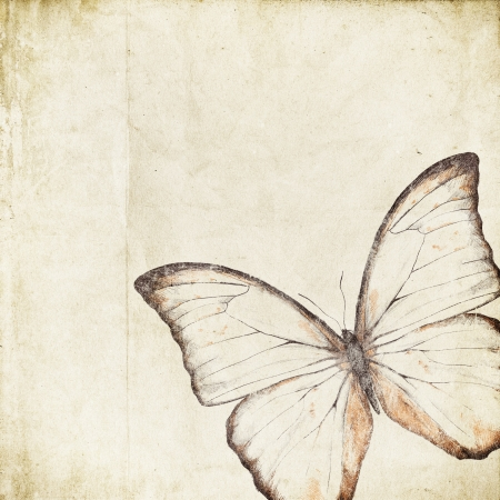 retro background with butterfly  Stock Photo - 14524865