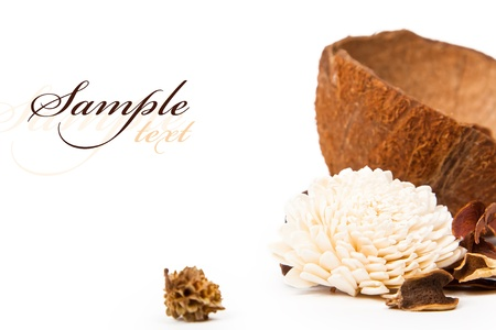 coco: Beautiful flower and coconut with space for text on the subject of aromatherapy and SPA
