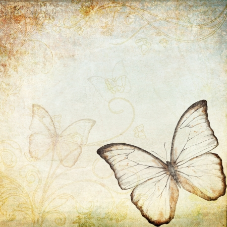 vintage background with butterfly  photo