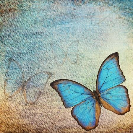 mariposa azul: de fondo de la vendimia con la mariposa Foto de archivo